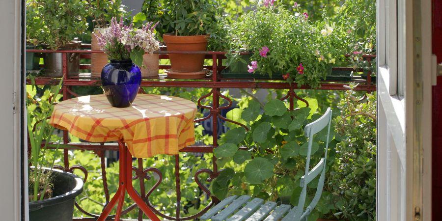 Saveti za dekorisanje terase